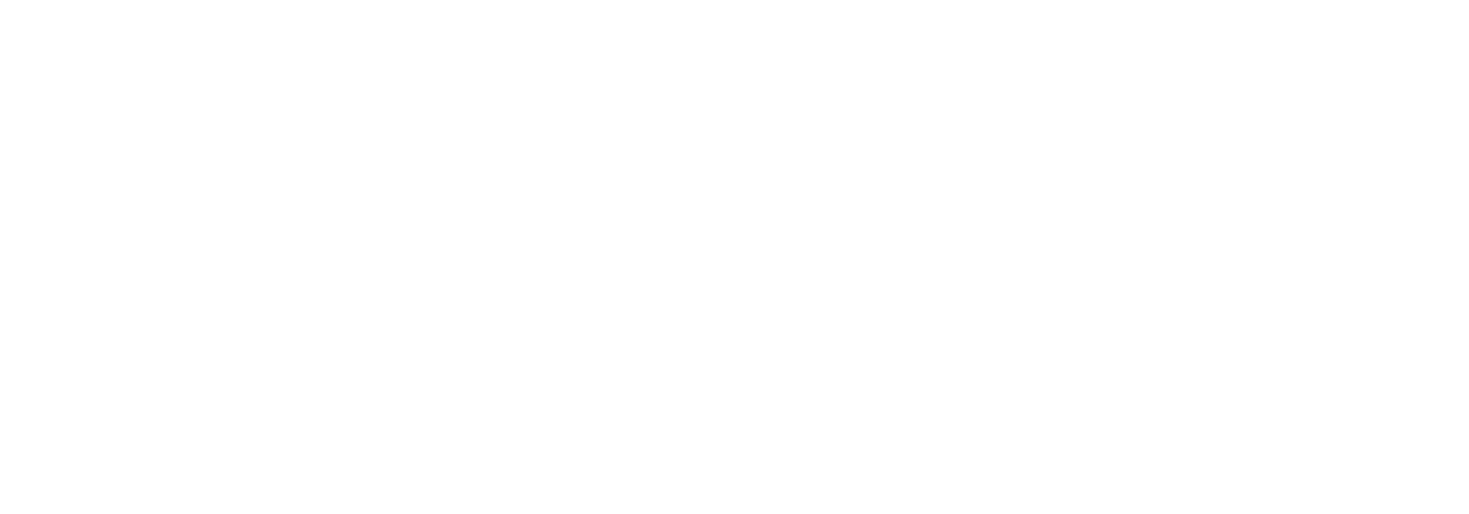 Baron Leisure